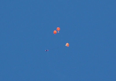 To stabilize it during descent for steadier images of the ground, the RATV-2 video camera payload uses two opposed parachutes.  The Tornado carrier rocket descends under its own separate 'chute (below).  Photo by Alan Carroll