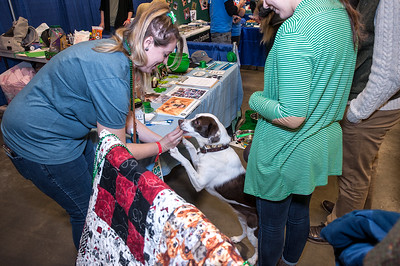 OPH_PET_EXPO_009