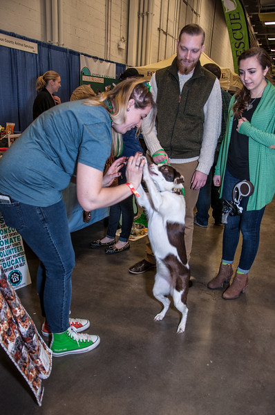 OPH_PET_EXPO_010