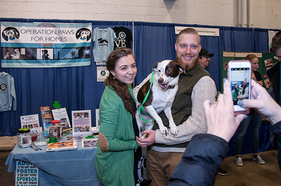 OPH_PET_EXPO_012