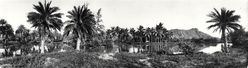 Waikiki Ponds & Diamond Head 1916