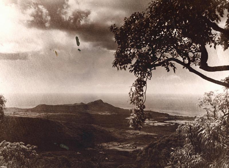Waikiki Duck Ponds c1908