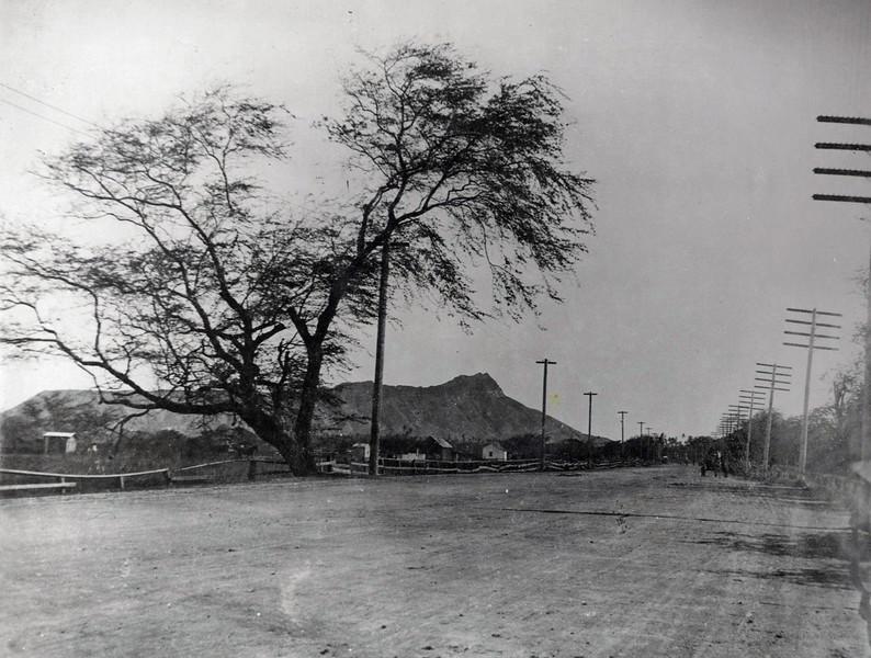 Kalakaua Avenue 1898