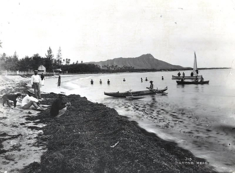 Waikiki 1885