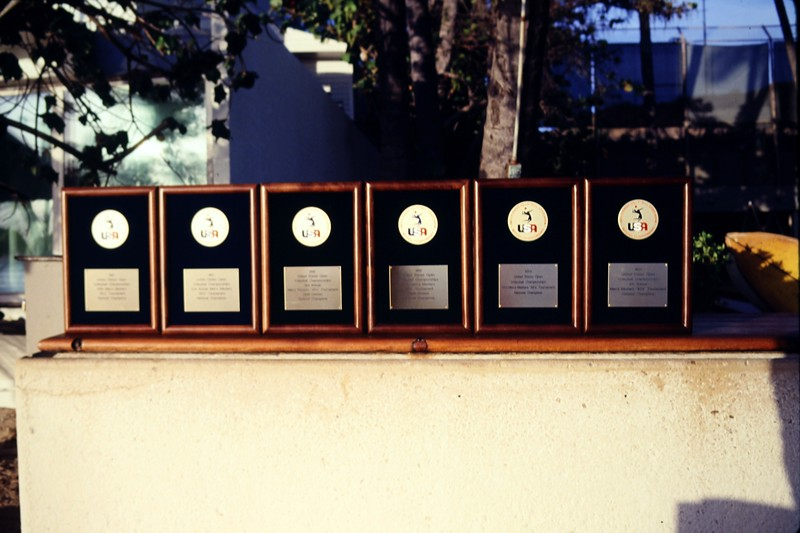 1993 USAV National Championships