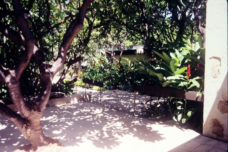 1997 OCC Lobby Garden
