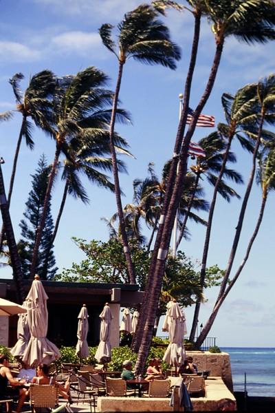1997 OCC Hau Terrace
