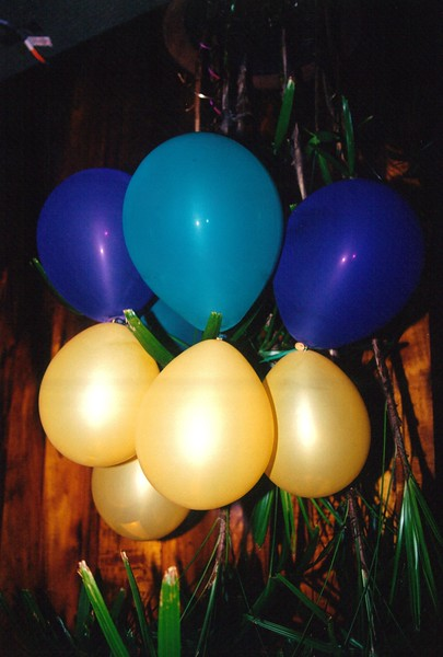 2000 Mardi Gras Party