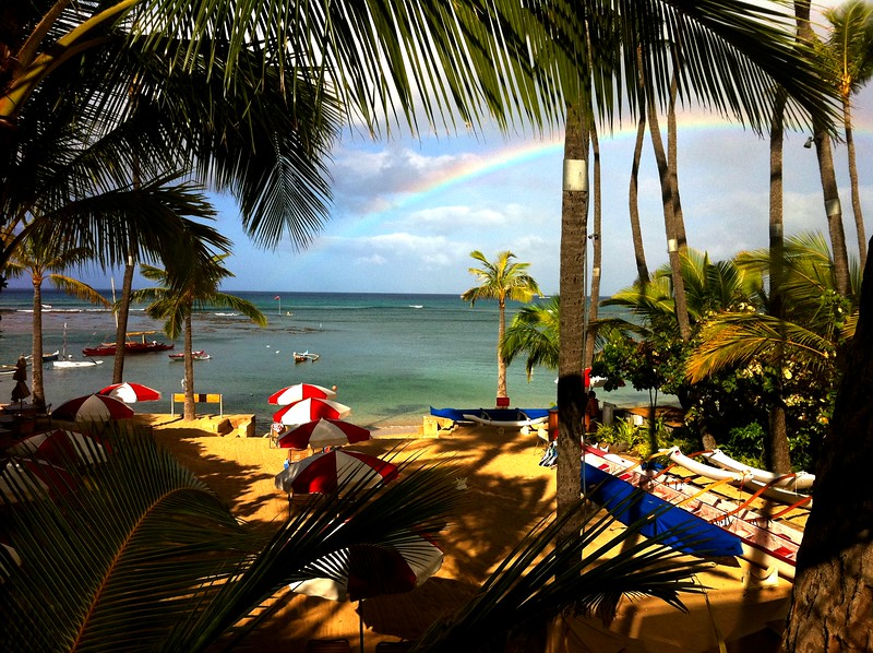 2011 Morning at the Outrigger Canoe Club