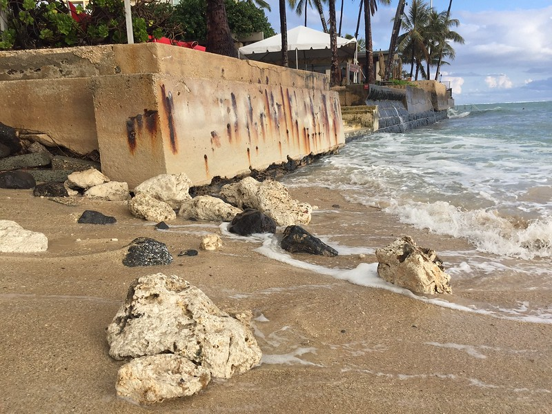 2017 OCC Sea Wall