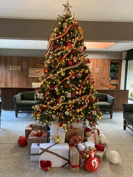 2019 OCC Christmas Decorations