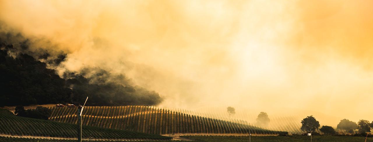 Sonoma Fires