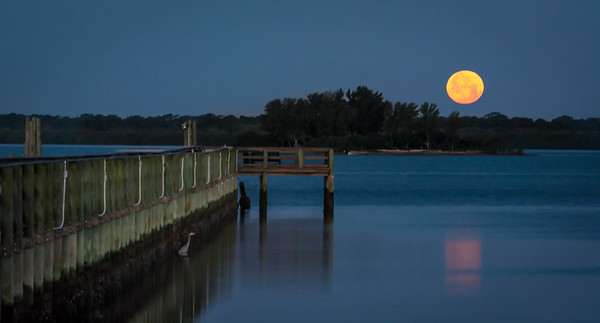 Moonset in Florida