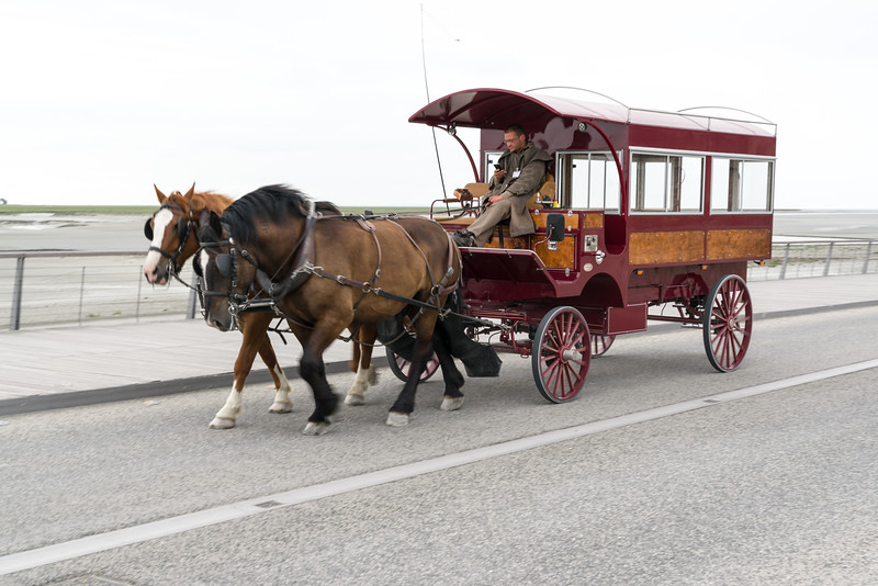 Not quite texting and driving, but I am glad the horses know where to go.