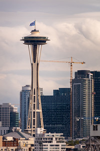 The Seattle Space Needle as seen from Ursula Judkins Viewpoint.