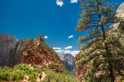 Looking south down the canyon and the start of Angels Landing trail