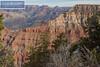 Grand Canyon South Rim-2190