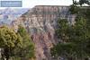 Grand Canyon South Rim-2179