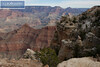 Grand Canyon South Rim-2164
