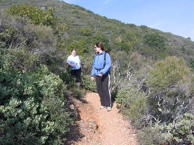 Hiking Mt. Tam