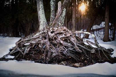 PatrickRogersPhotography-2014-0003