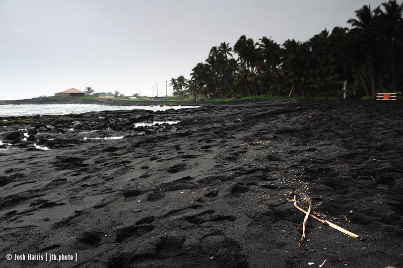 Punalu'u Black Sand Beach, Hawai'i, December 2008.