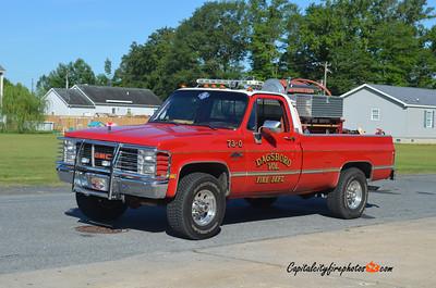 Dagsboro Brush 73-0: 1991 GMC 150/250