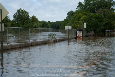 Rochelle Pk NJ, Rochelle Ave near Essex St. the Saddle River has crested it's banks and is flooding the neighborhood.