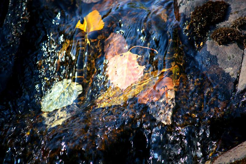 Falling Downstream