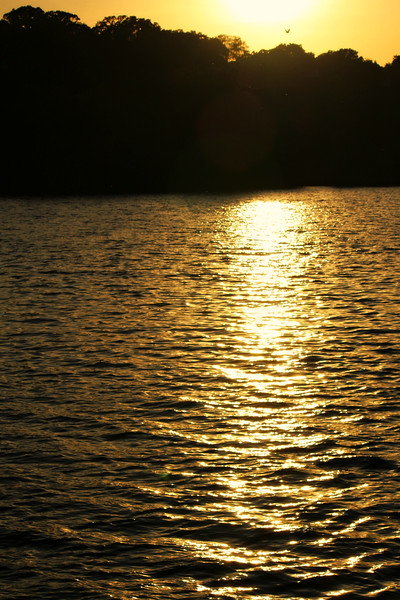 St. Croix River Gold
