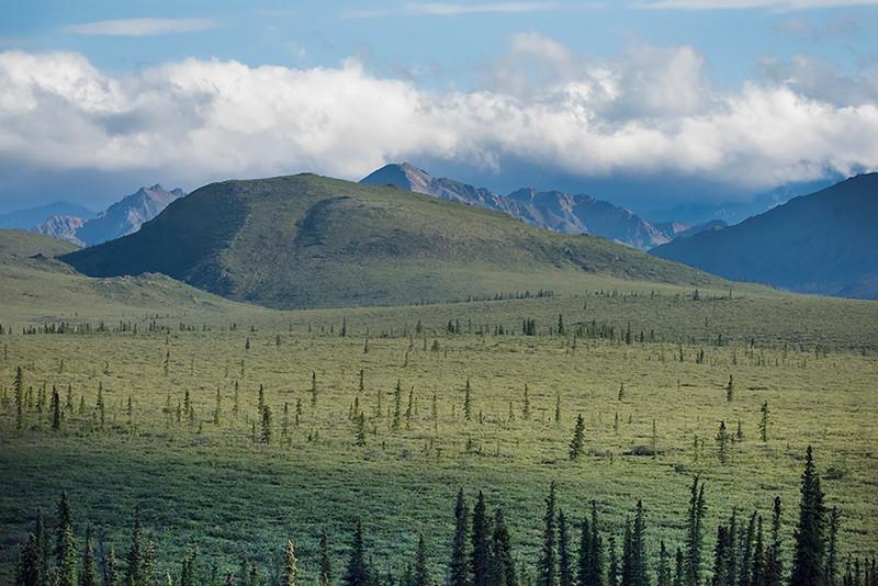 Alaska's Denali National Park