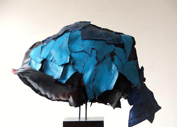 Rotsvis blauw 975,00