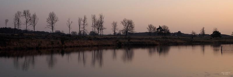 Bomenrij_aan_het_ven_00743c_JD_KWA0216WI