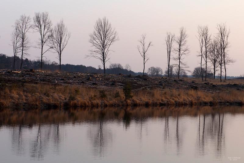 Bomenrij_aan_het_ven_00752c_JD_KWA0216WI