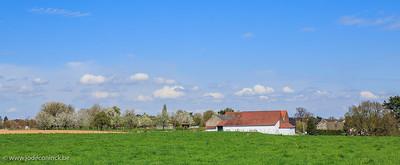 1304 Hallerbos - Pasar D'Leeuw