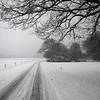 Winter in Ommen, The Netherlands