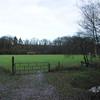 De paardeweide, eerste thuisbasis van OZC, in de herfst.
