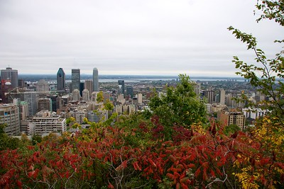 Montreal 14