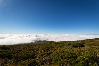 Maui-14-2.jpg