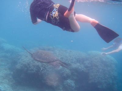 Underwater Maui-0907.jpg