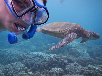 Underwater Maui-0906.jpg