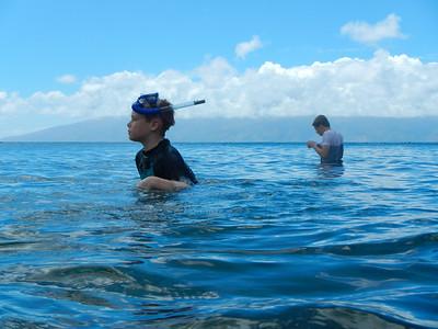 Underwater Maui-40.jpg