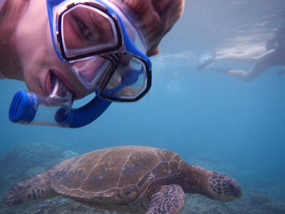 Underwater Maui-0902.jpg