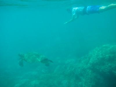 Underwater Maui-12.jpg