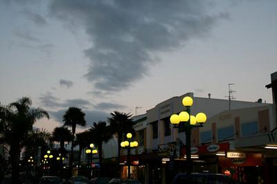palm trees in nz !.jpg