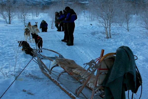 Abisko Dog Sledding 36