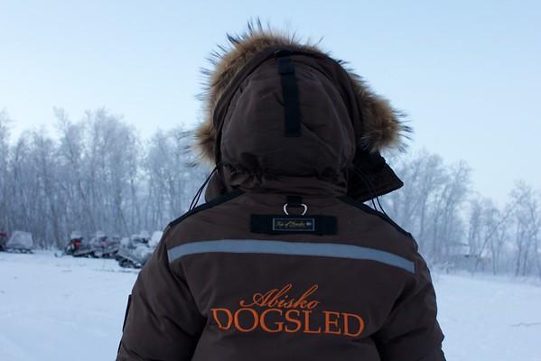 Abisko Dog Sledding 8
