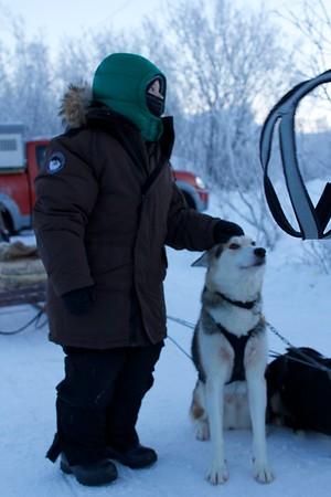 Abisko Dog Sledding 28