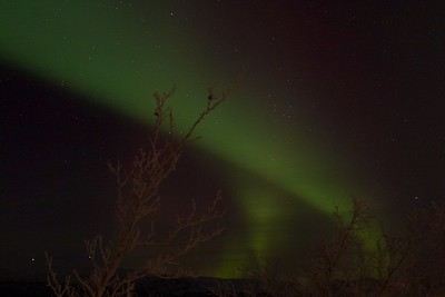 Abisko Northern Lights 20
