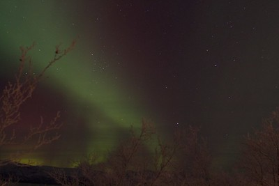 Abisko Northern Lights 16